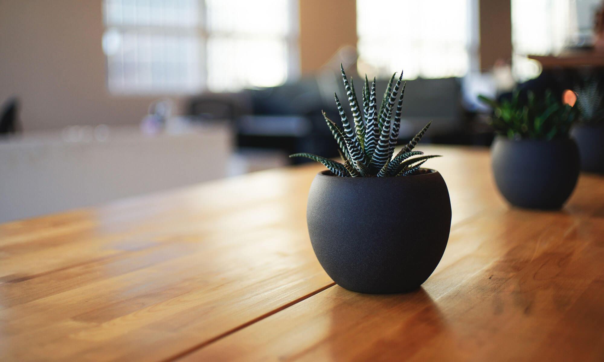 furniture.org.za